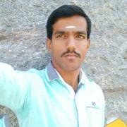 G114803 Photo